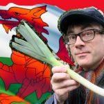 Ten reasons to learn Welsh