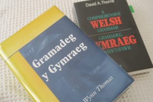 Two Welsh grammar books Dau lyfr Gramadeg y Gymraeg