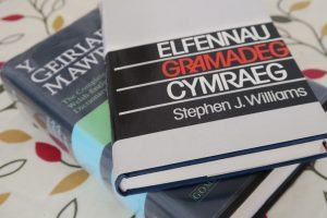 Welsh dictionary and grammar book