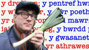 Dr P illustrates Welsh noun gender with the help of a leak