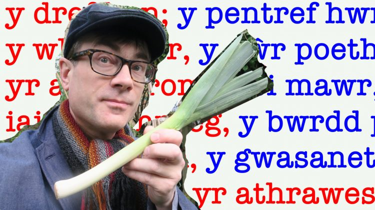 How to remember the gender of Welsh nouns and when it matters