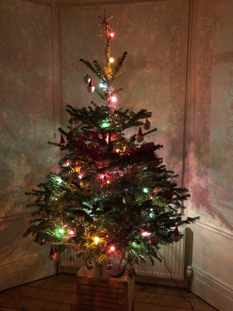 Dr Popkins' 2019 Christmas tree (photograph)