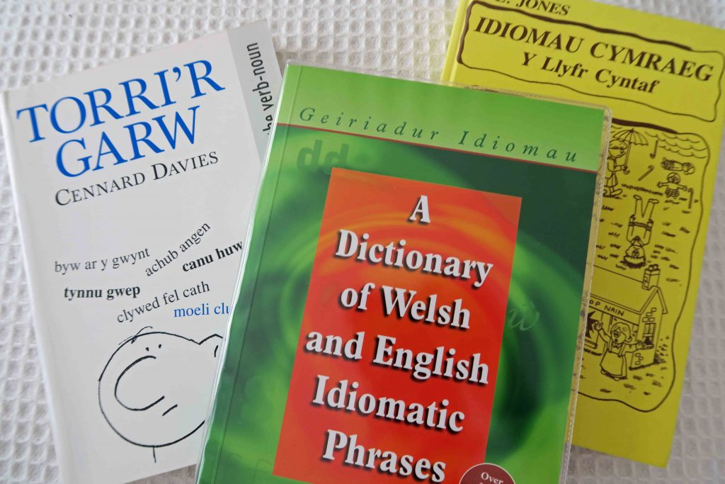Books of Welsh idioms