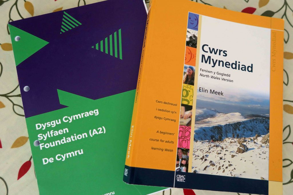 Welsh course books teaching South Wales Welsh and North Wales Welsh